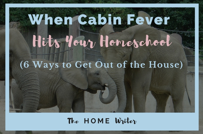 When cabin fever hits your homeschool